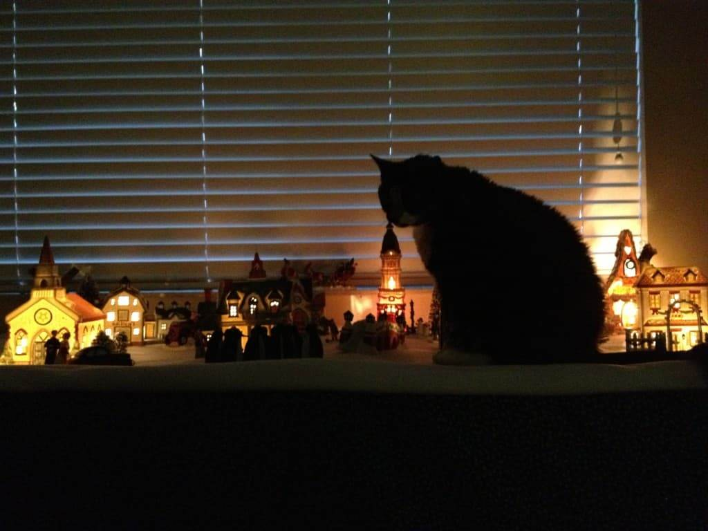 While its not a fibery picture, I love this photo of Pepper stalking the  Christmas village.