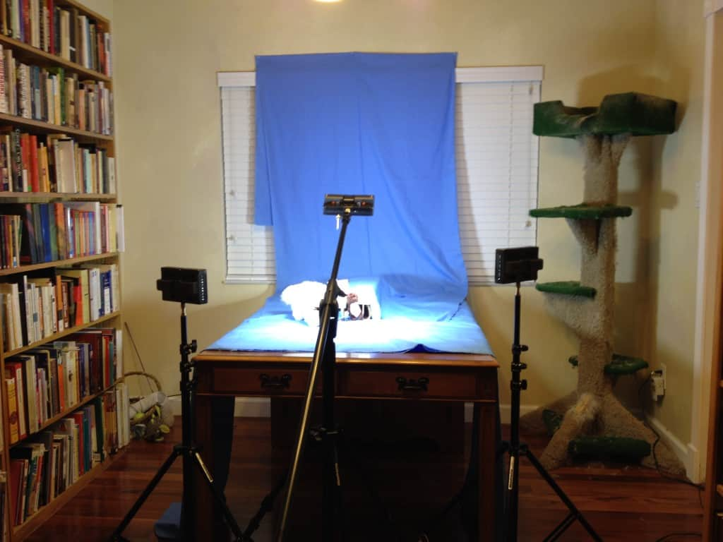 The other set was the Weasel's burrow.  This behind the scenes shot shows the burrow set up on my dining room table.