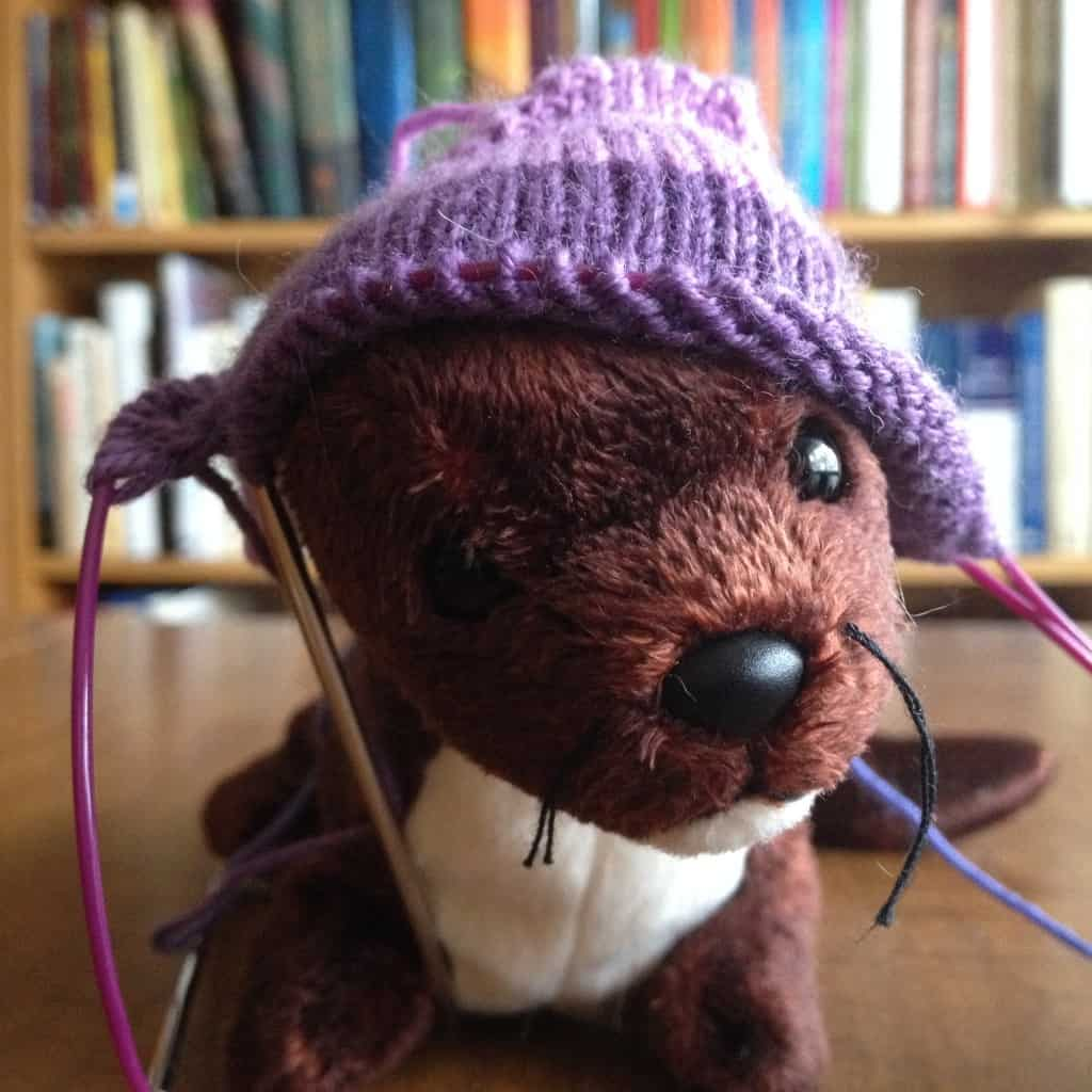 The Weasel wearing a sock toe hat.