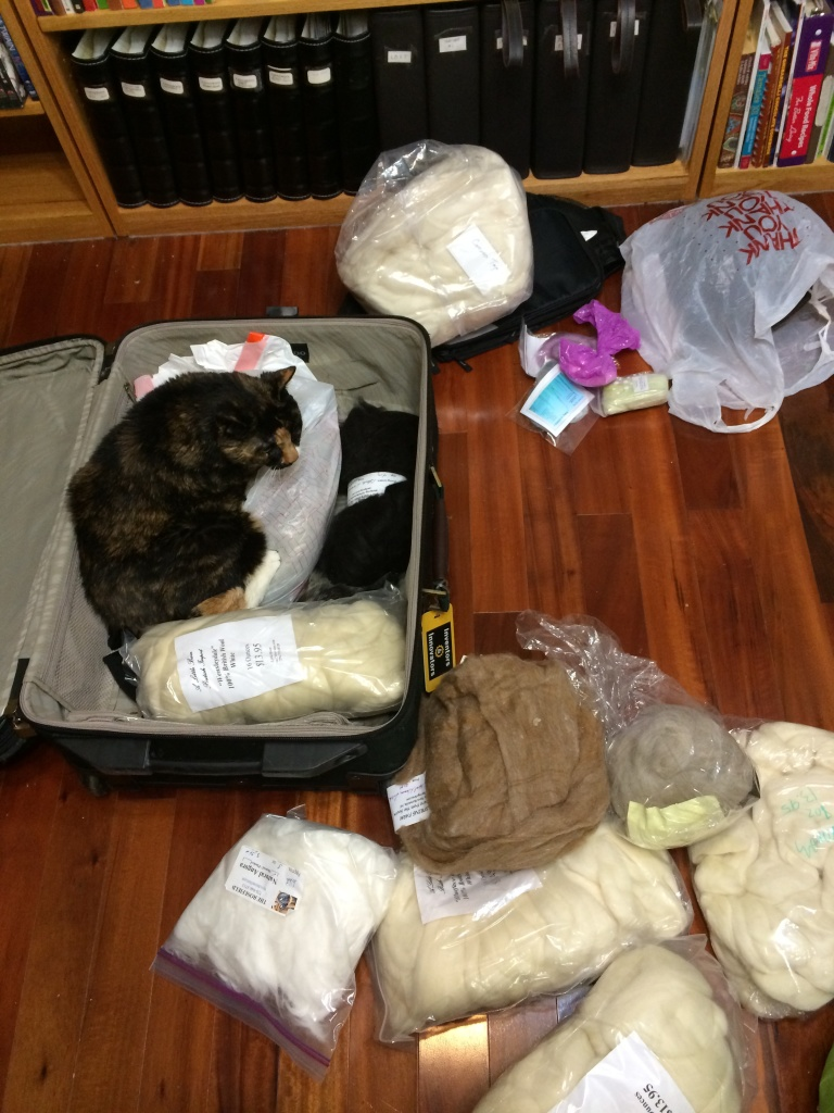Pepper thought the suitcase of fiber was quite comfortable.  She was purring loudly!